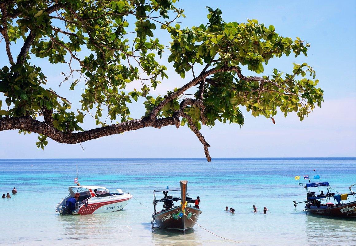 Райский остров - Мила C