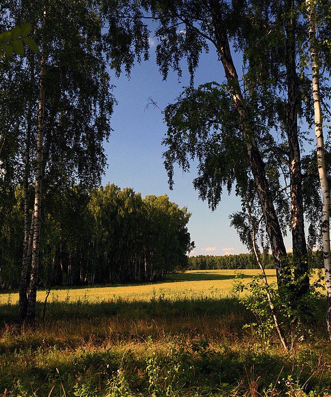 лето - Сергей