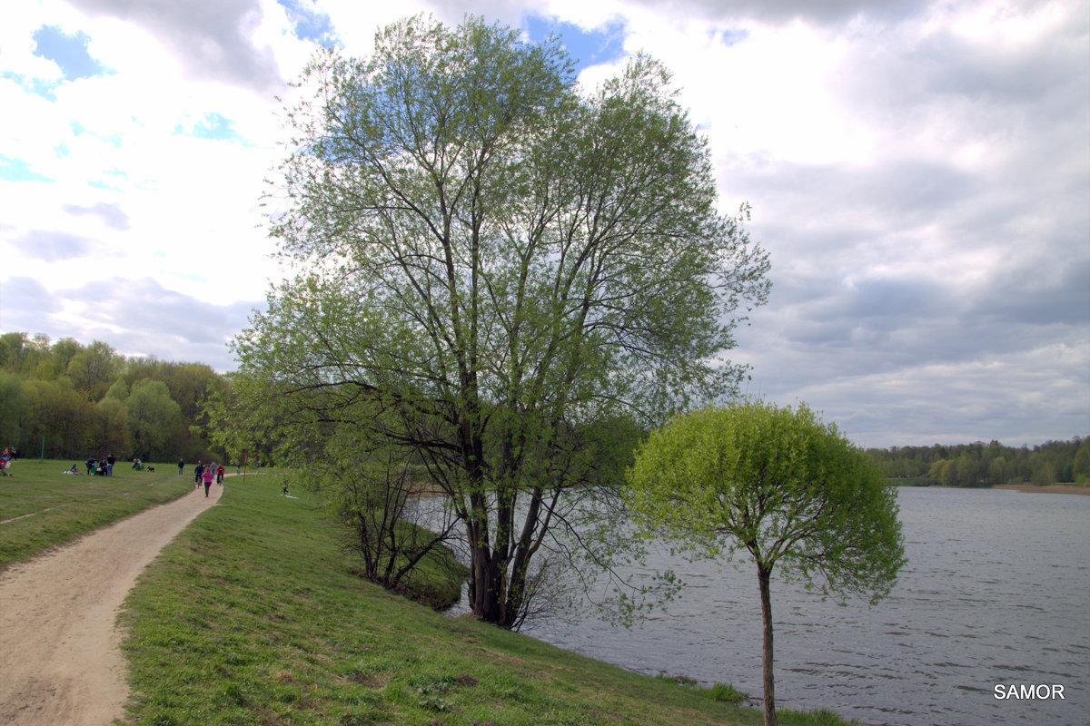 Пейзаж - Валерий Самородов