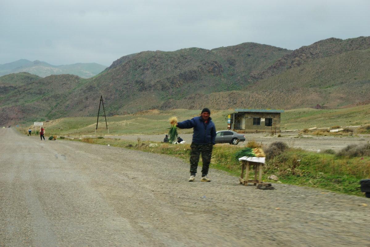 Окрестности Алматы. горный лук.... - Murat Bukaev