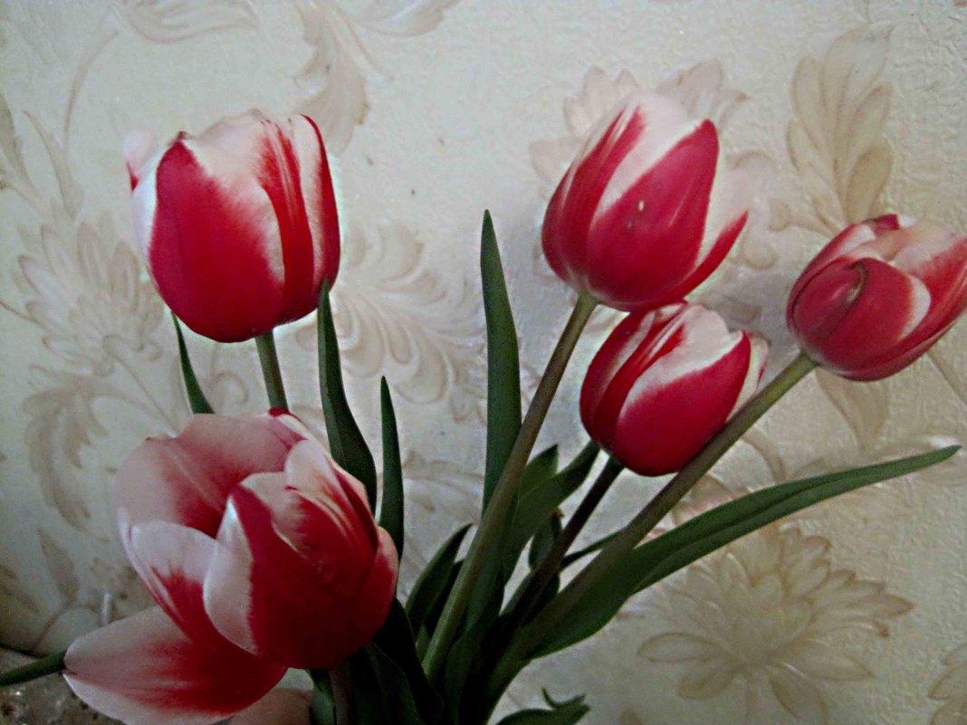 Букет тюльпанов - Елена Семигина