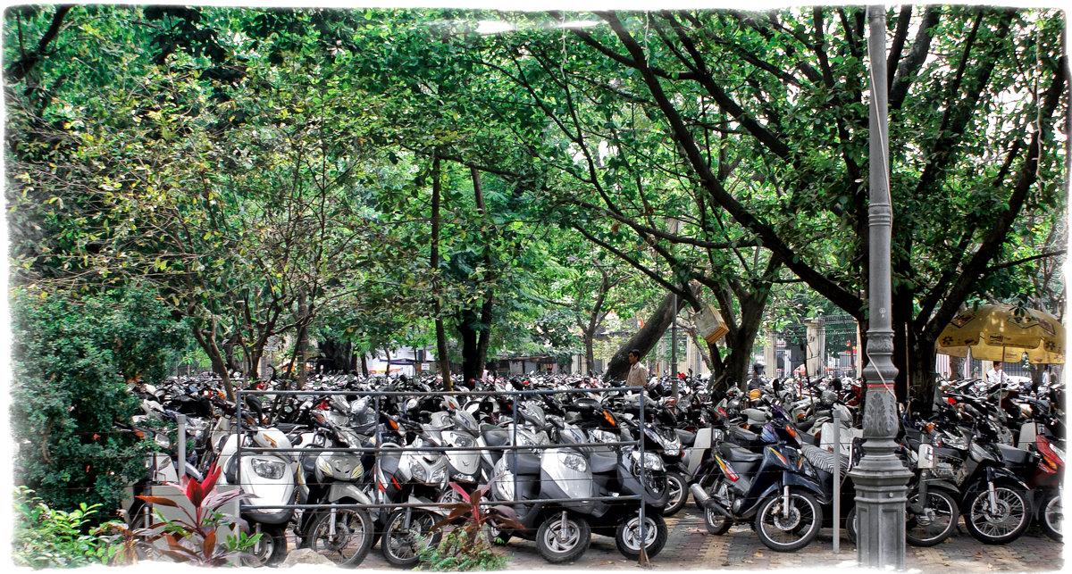 Парковка по Вьетнамски - Alexander Dementev