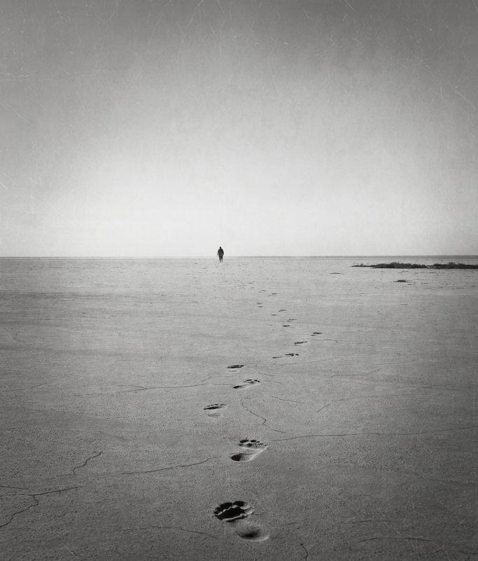 Свобода - Sage Ekchard