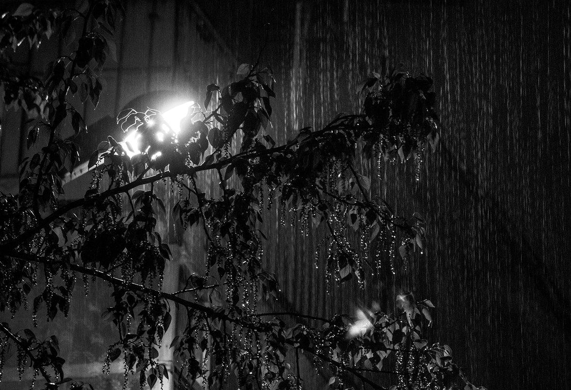 Просто идет дождь - Сергей Елесин