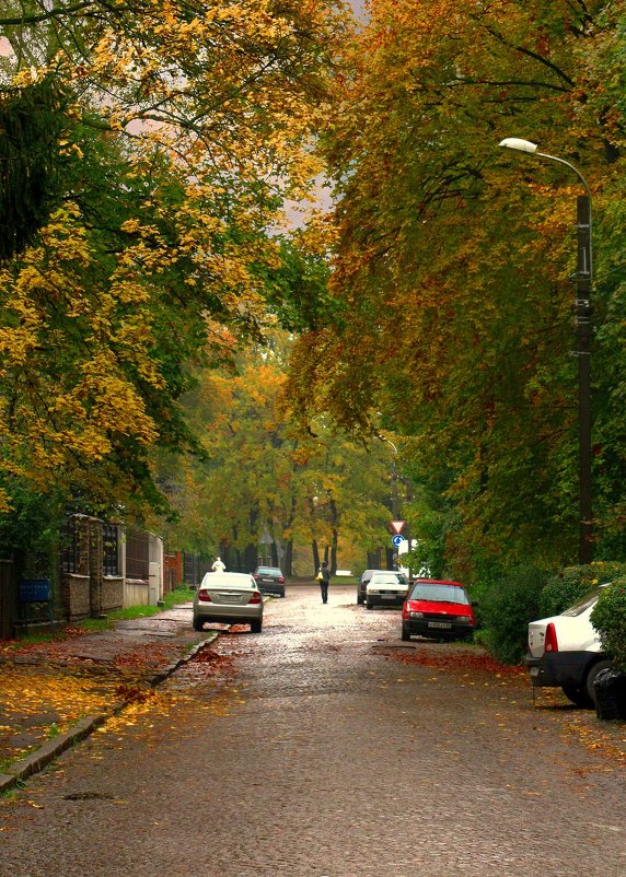 Осенняя улица - Сергей Карачин