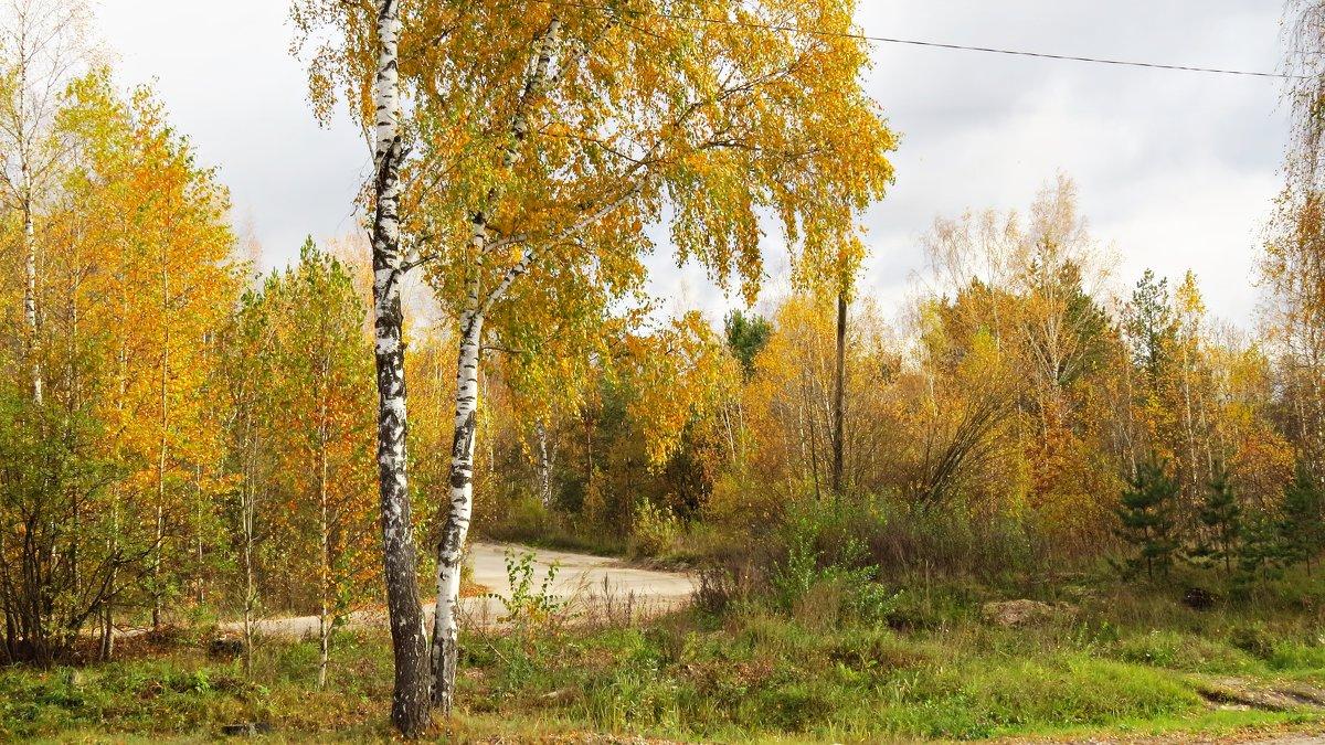 Пейзаж - Людмилаfdnjgjhpnhptn