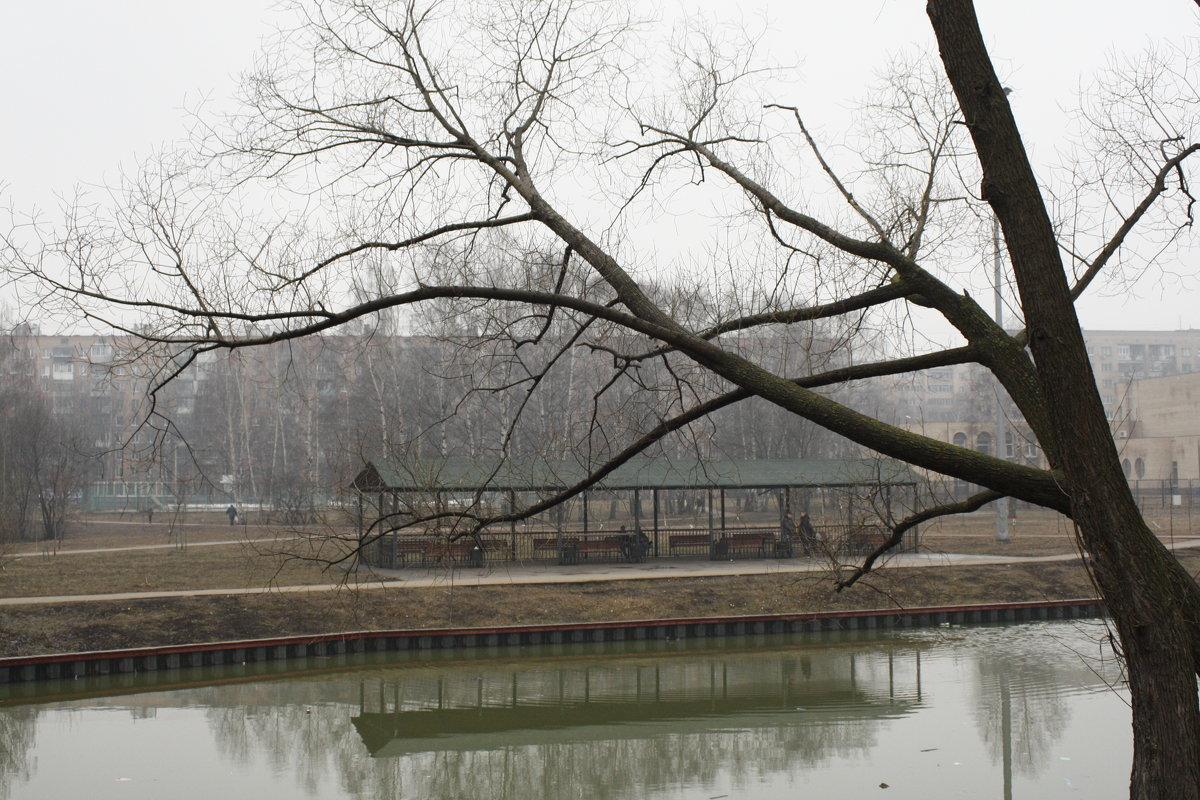 весна.туман - Lena Zalesska