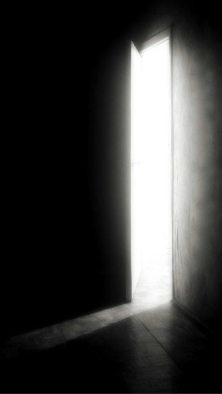 Дверь в светлое будущее. - Sasha Ryazantsev