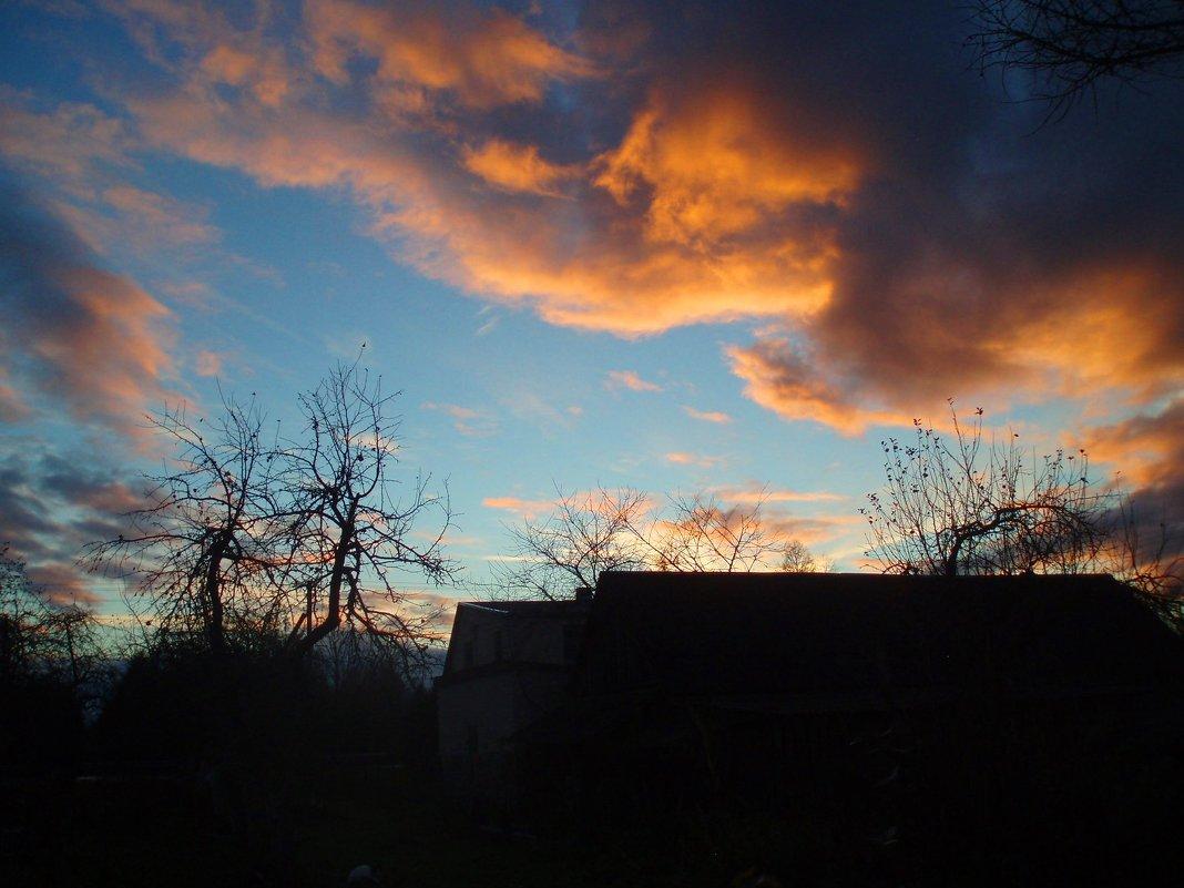 Vakaras / Evening in my garden - silvestras gaiziunas gaiziunas