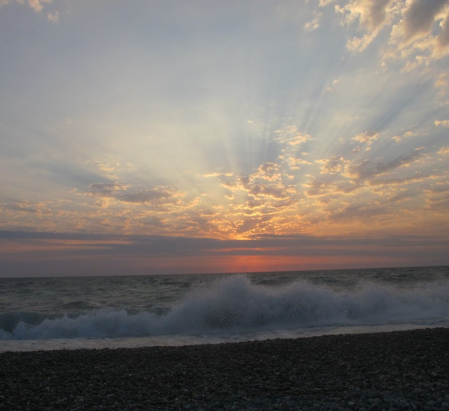 Чёрное море. Абхазия - Дина Дробина