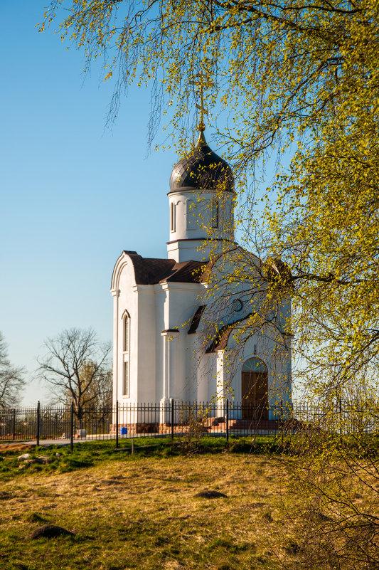Весенние мотивы - Alexander Petrukhin