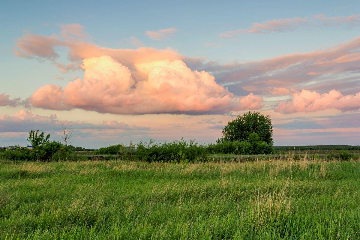 Облако на закате - Юрий Стародубцев