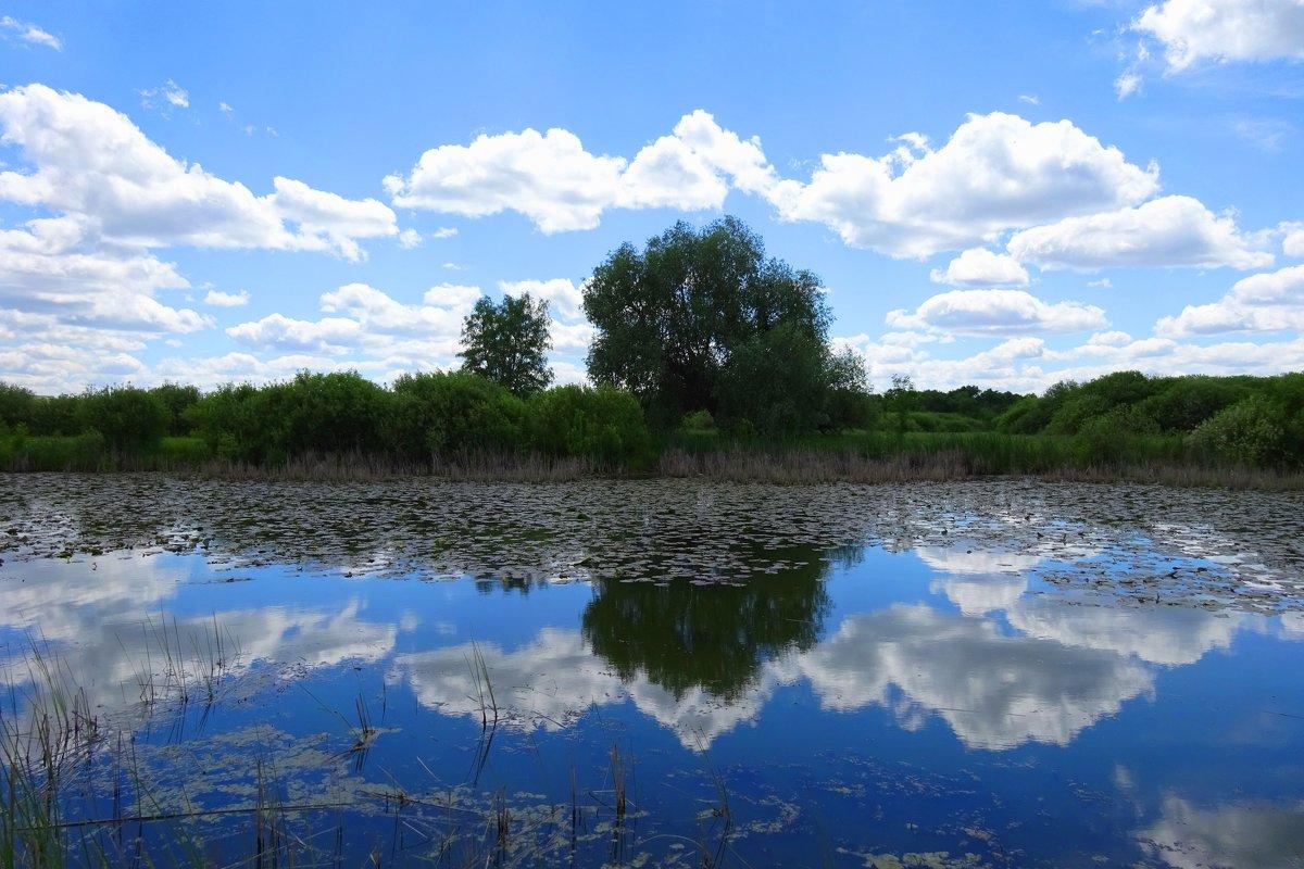 отражение... - Ирина