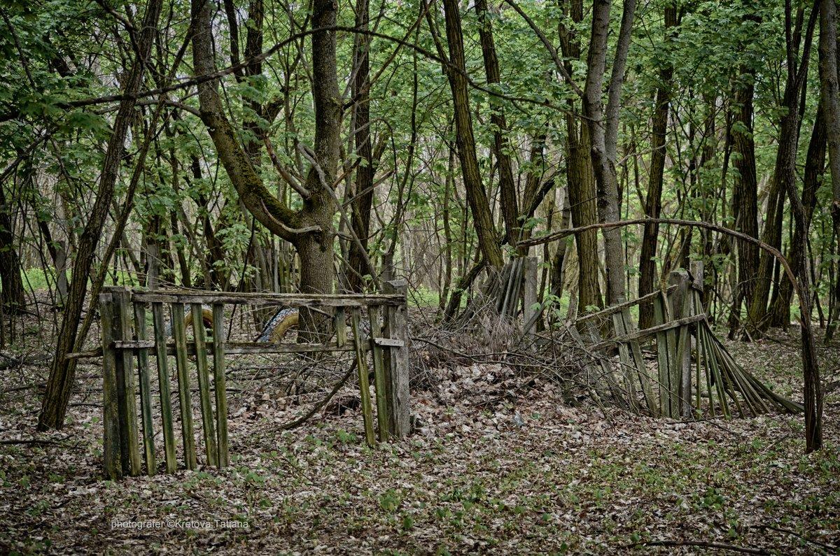 Забор детского садика в с.Копачи - Tatiana Kretova