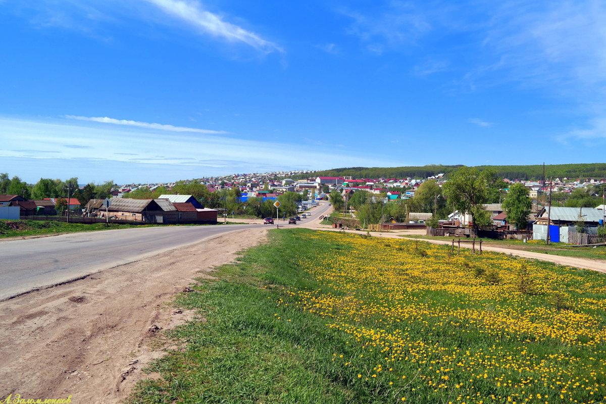 Дорога к дому - Андрей Заломленков