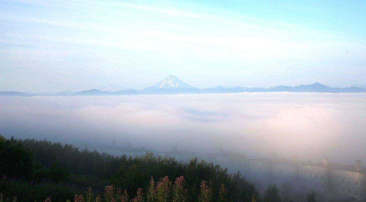Туман - IURII