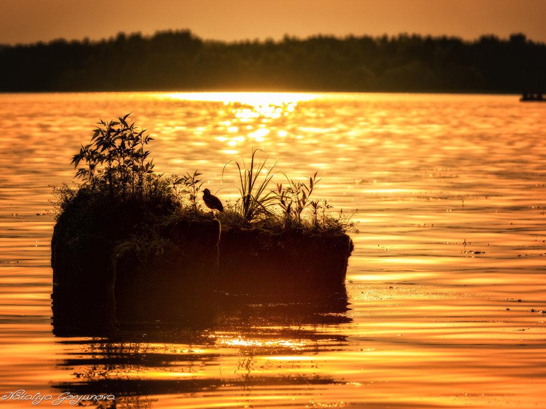 Островок на закате - Наталия Горюнова
