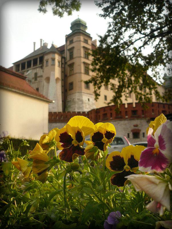 Вавельский замок - Galina Belugina