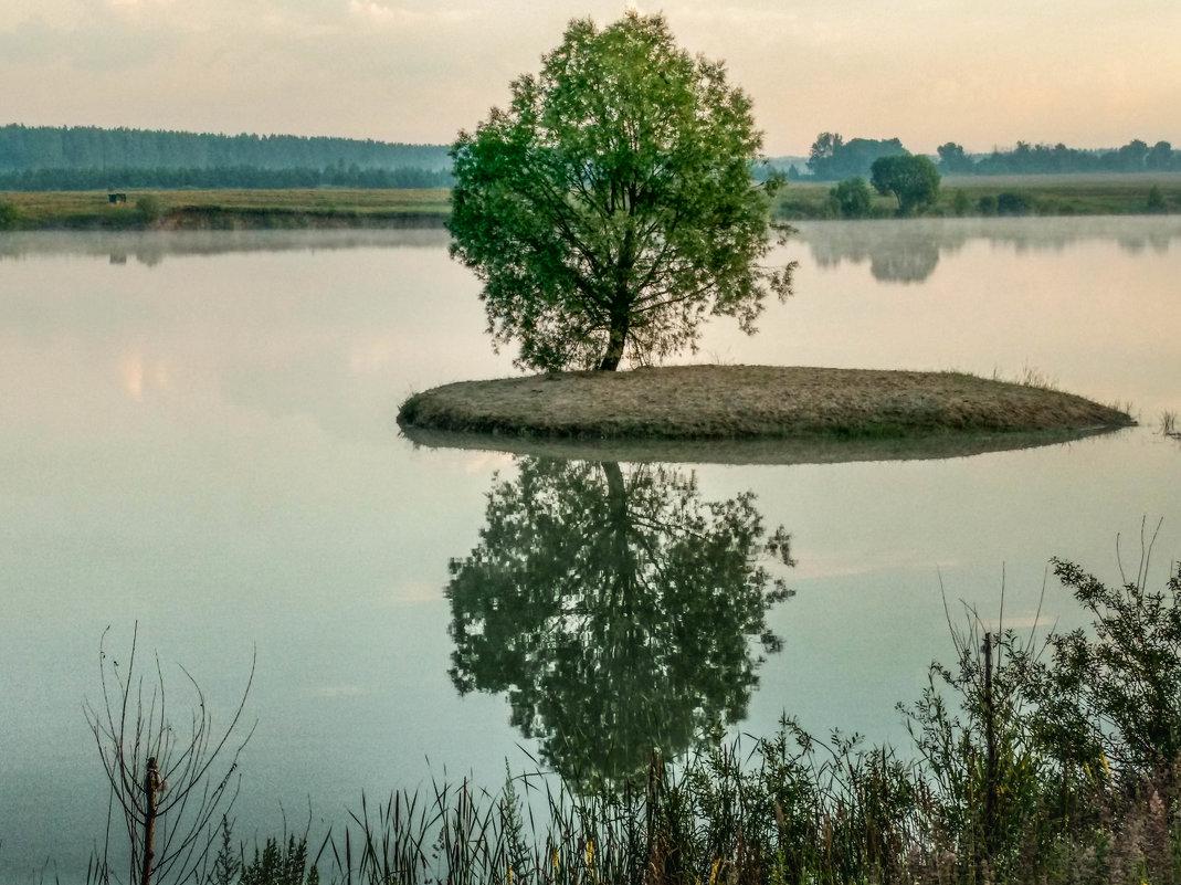 Отражение - ирина лузгина