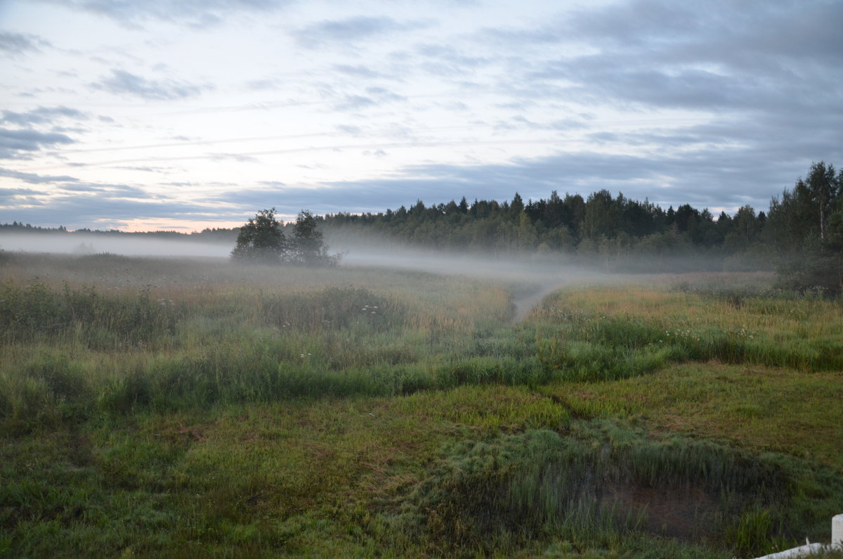 Седое туманное утро - demyanikita