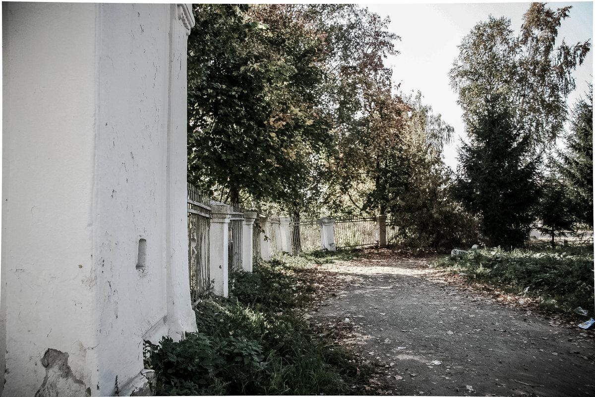 старый парк - Екатерина Липинская