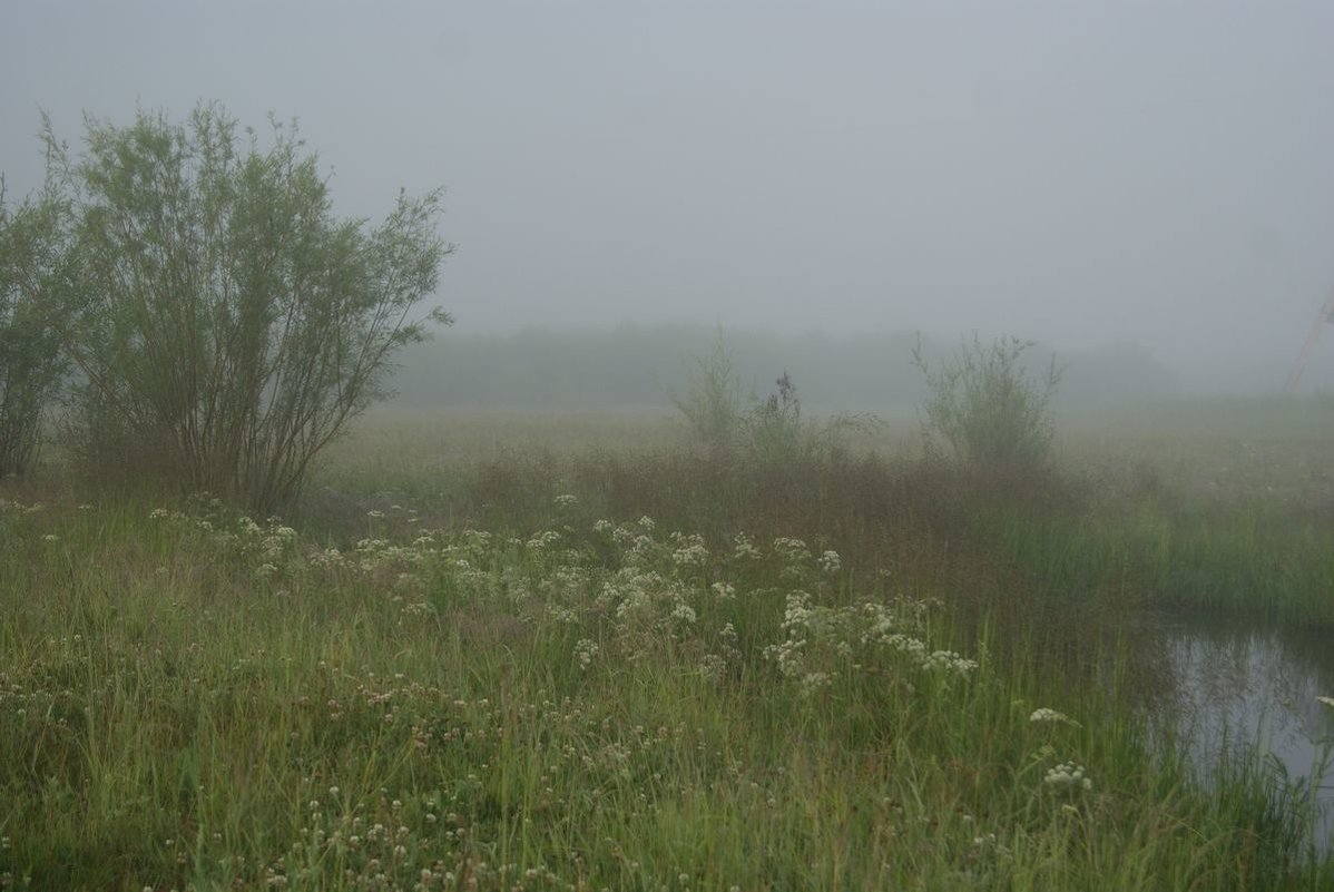 утро туманное, утро седое - Надежда Мельникова