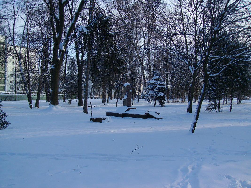 Зима  в   Ивано - Франковске - Андрей  Васильевич Коляскин