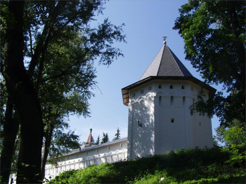 Саввино-Сторожевский монастырь - Анна Воробьева