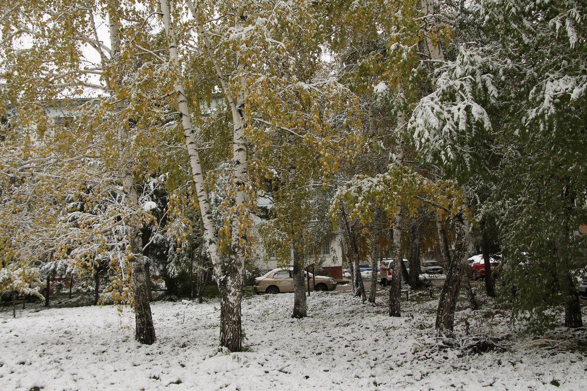 Первый снег в Бийске - Олег Афанасьевич Сергеев