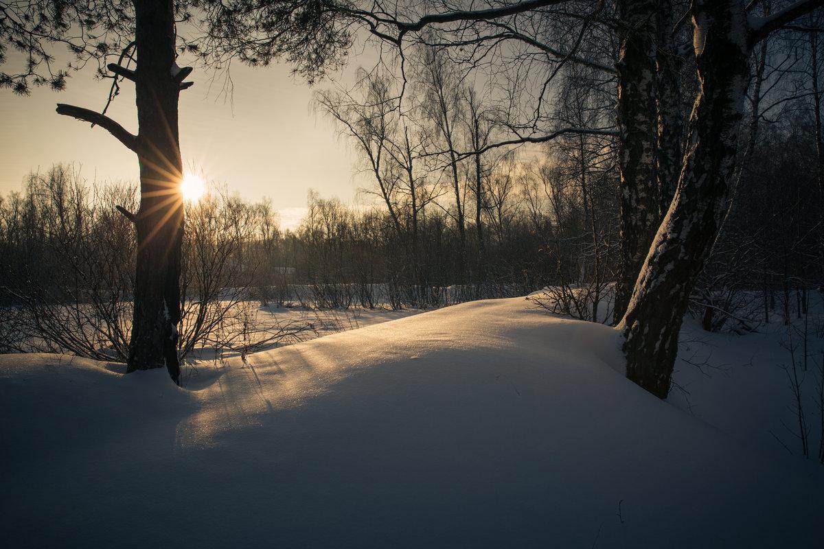 Зима и солнце - Алексей Федотов