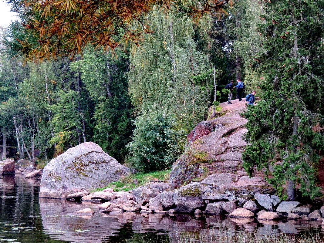 Скалы - естественное украшение парка - Светлана Петошина