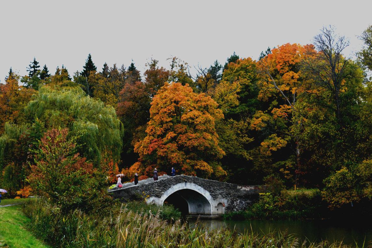 Осень - Юлия Морец