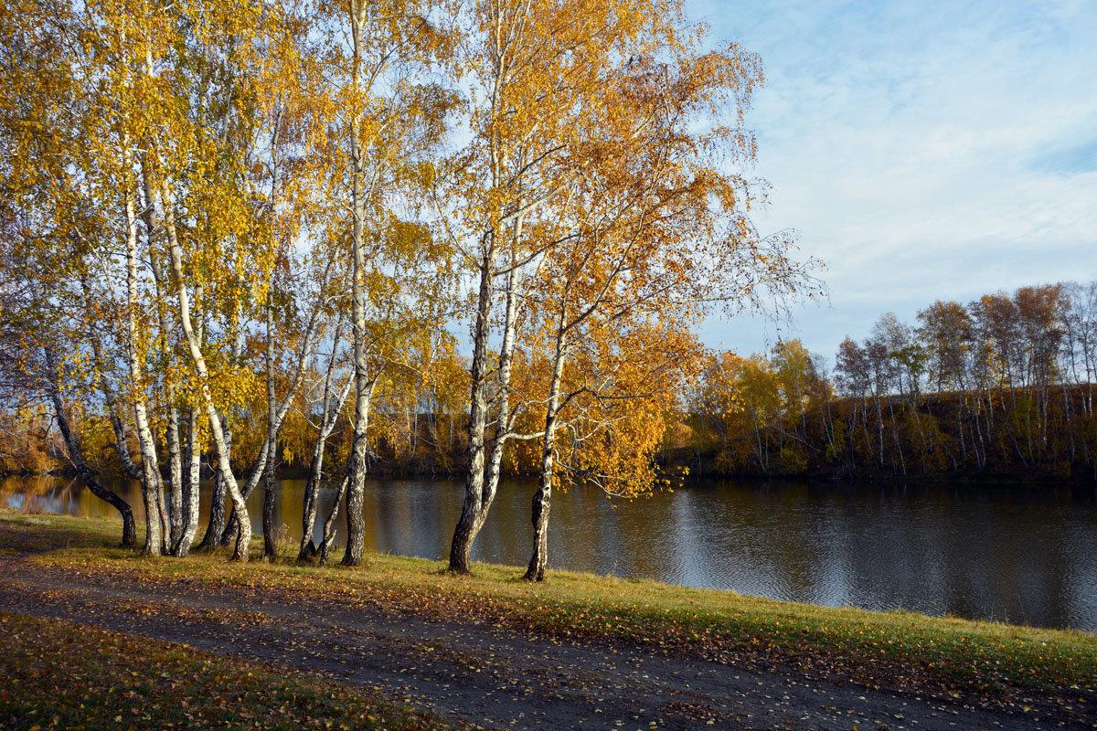 Осень  идёт - Геннадий С.