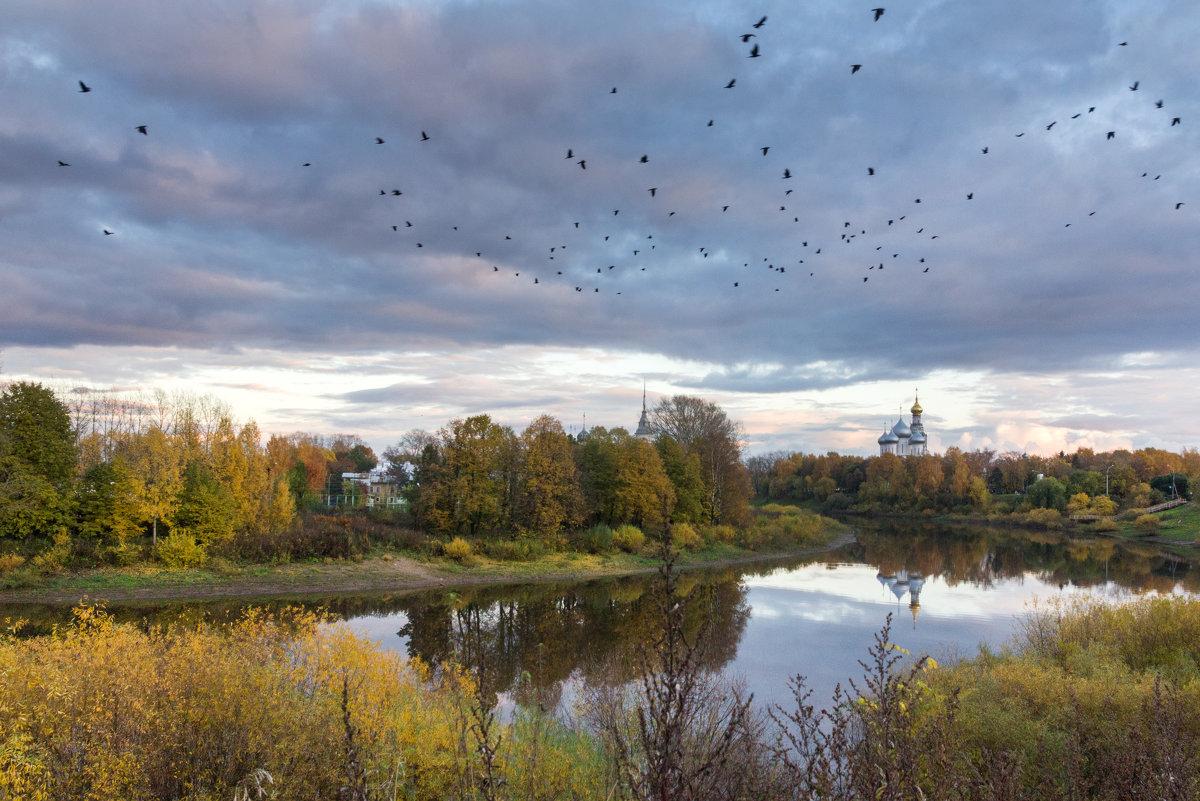Птицы над осенним городом - Татьяна Копосова