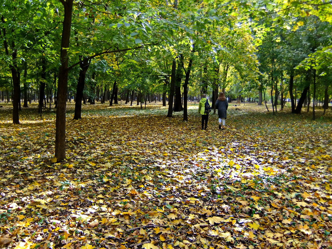 Осенний парк - Ольга Степанова