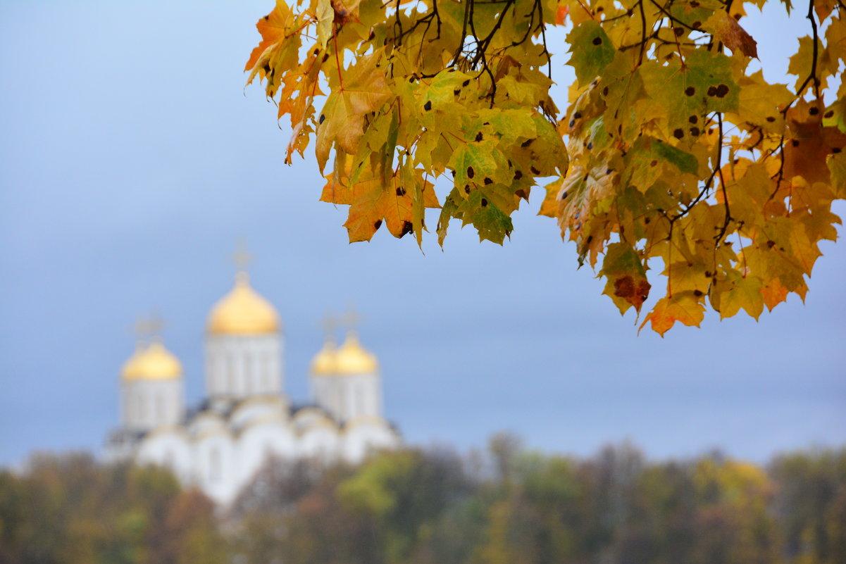 Владимирская осень - Александр