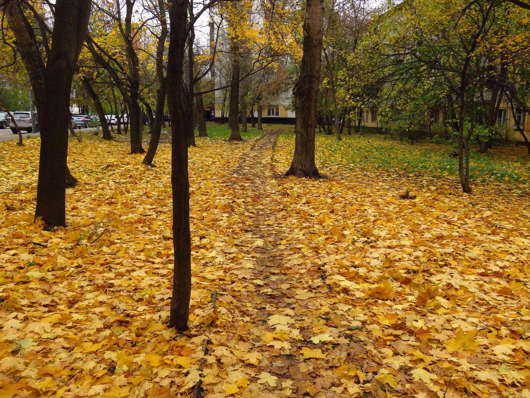 Осень не первоначальная - Андрей Лукьянов