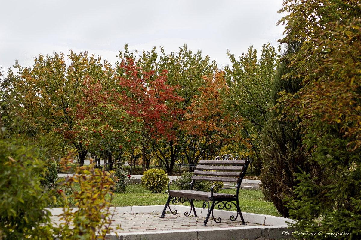 Осень скверы украшает Разноцветною листвой. - Светлана