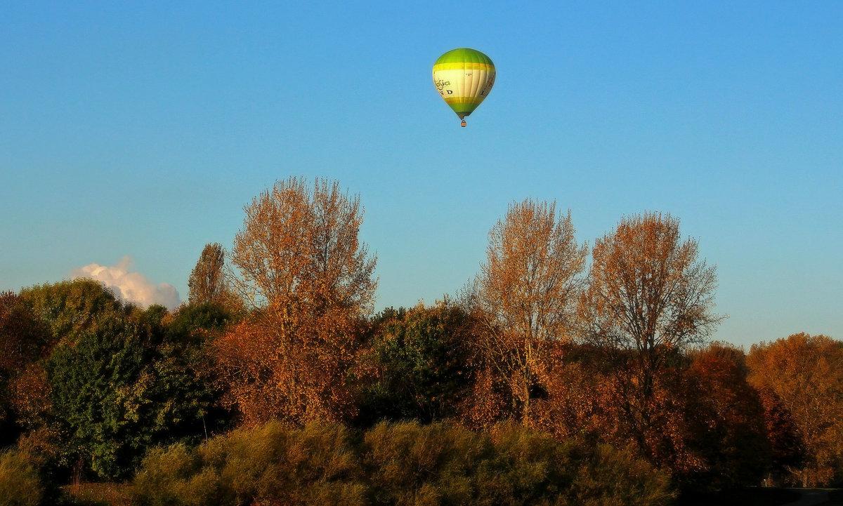 Осенний полёт - Alexander Andronik