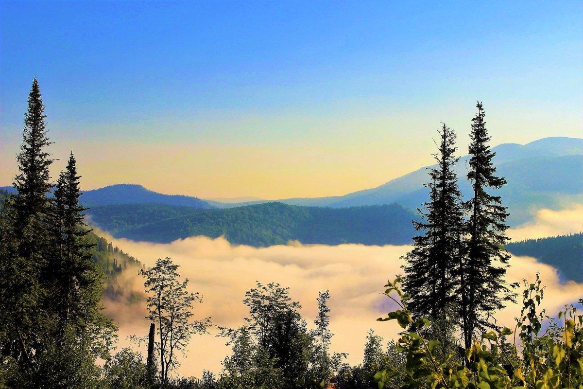 Густой туман в долине - Сергей Чиняев