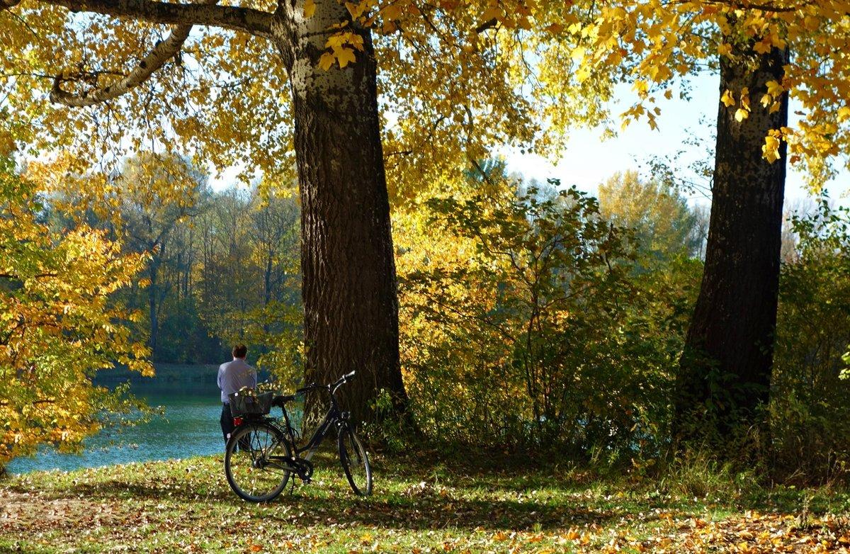 Осень-время раздумий... Время подумать, додумать, решить,... - Galina Dzubina
