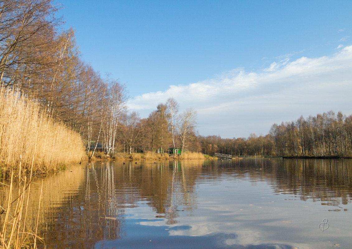 Осень в парке - Виталий
