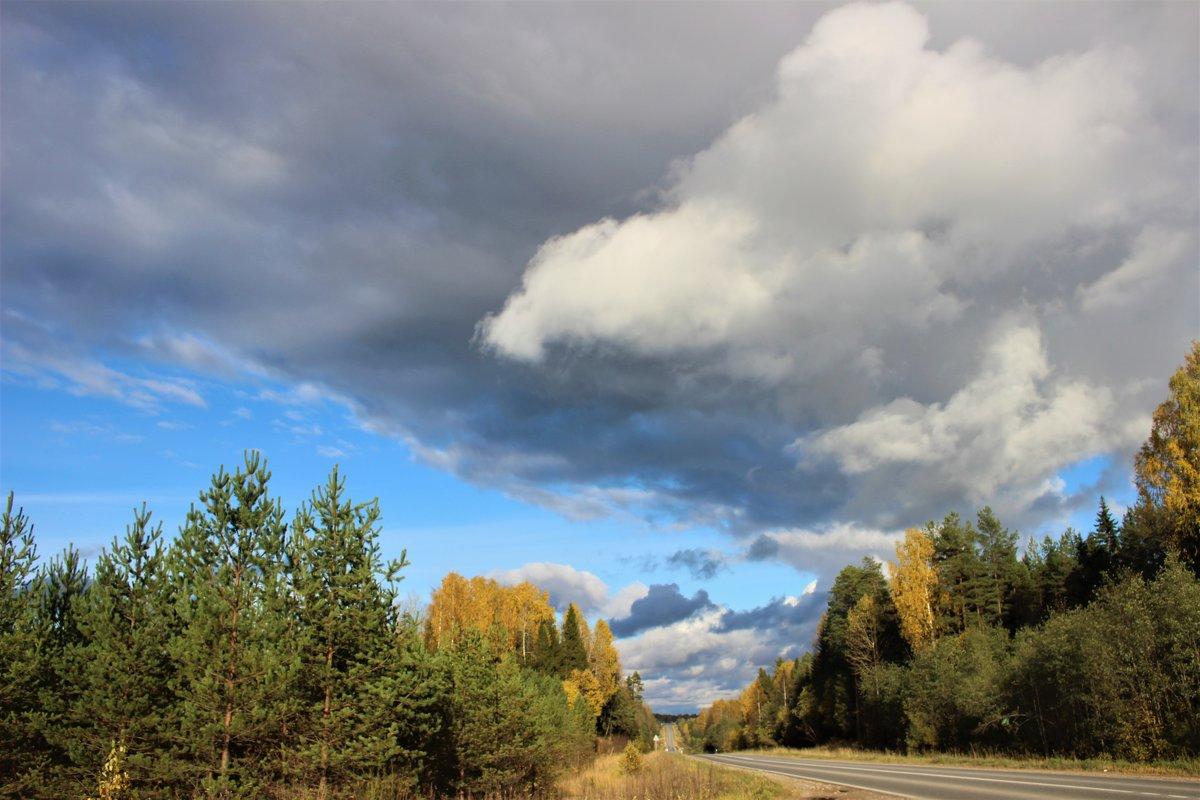 Октябрьский пейзаж. - Ираида Мишурко
