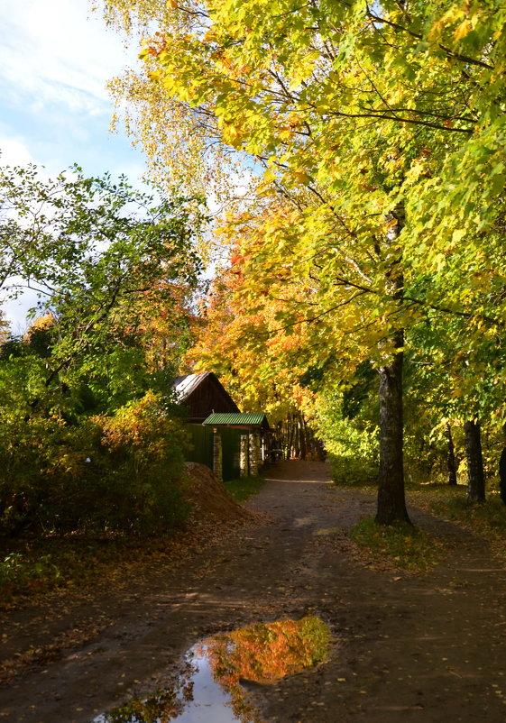 Осень золотая - Ирина Никифорова
