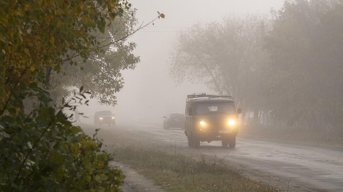 В тумане - Вера Сафонова