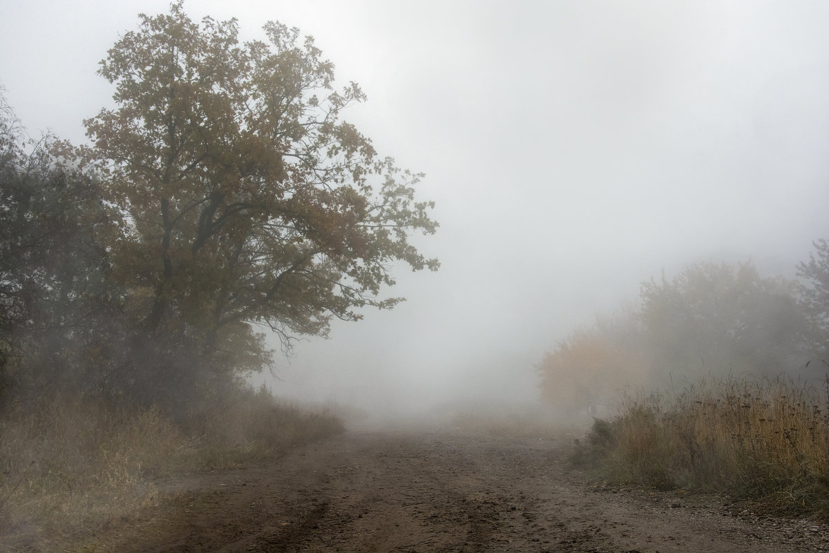 туман - Viktoria Anufrieva