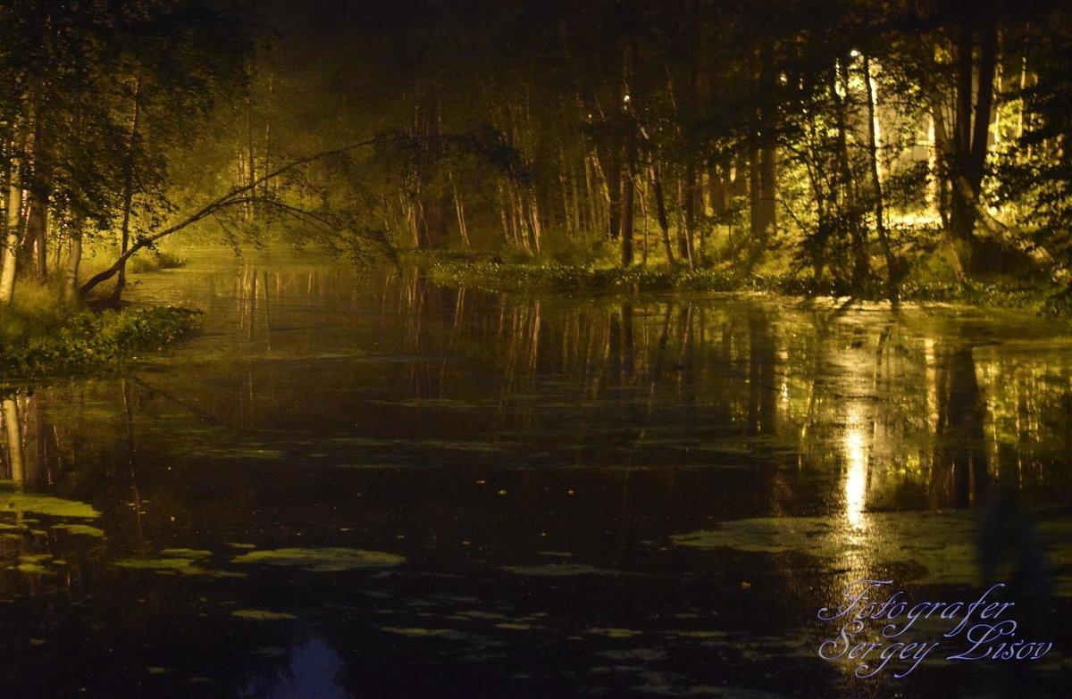 ночная сказка - Сергей Лисов