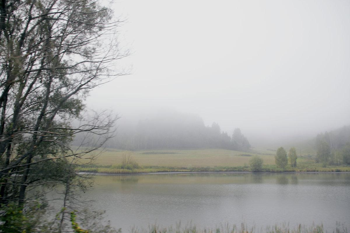 Туман - Алексей Хвастунов