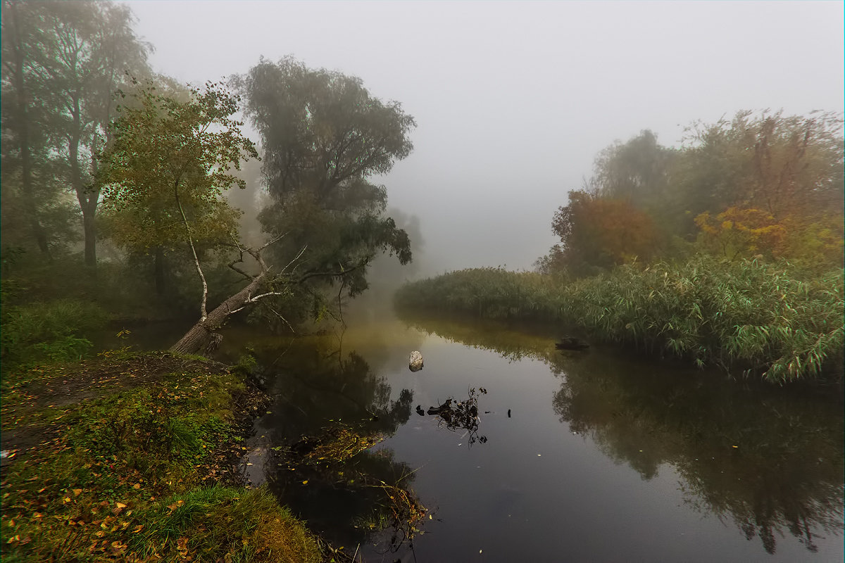 Протока в октябре. - Павел Петрович Тодоров