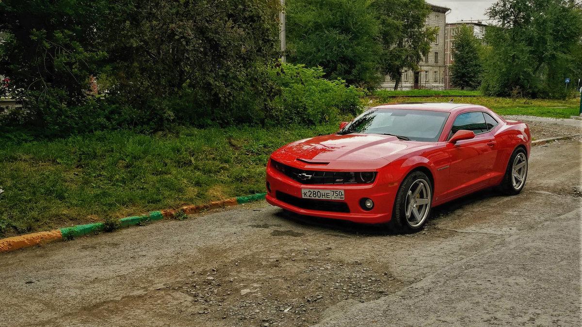 Chevrolet Camaro - Dmitry i Mary S